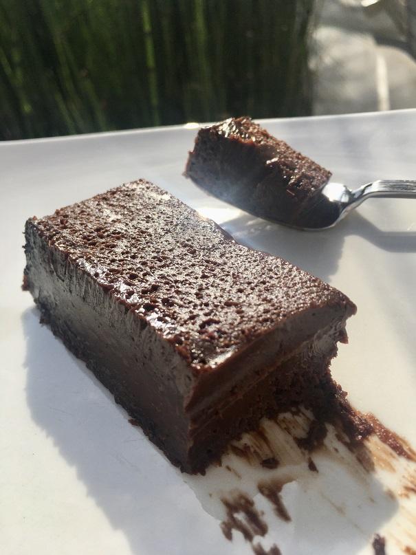 עוגת שוקולד עשירה מאוד –נמסיס