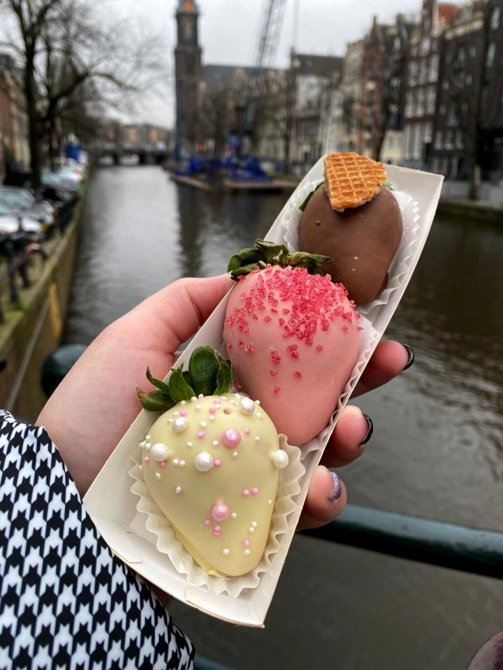 הולנד לפודיז בשלושה חלקים – חלקראשון